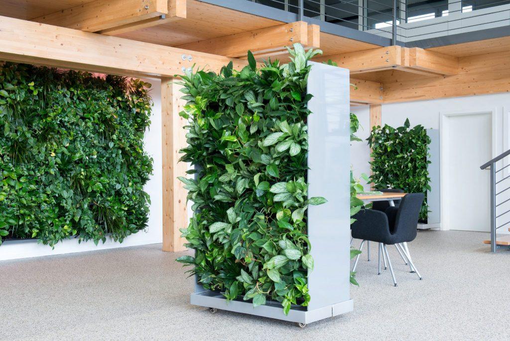 Mur végétal intérieur en plantes naturelles