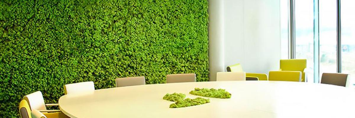 mur végétal mousse naturalisée