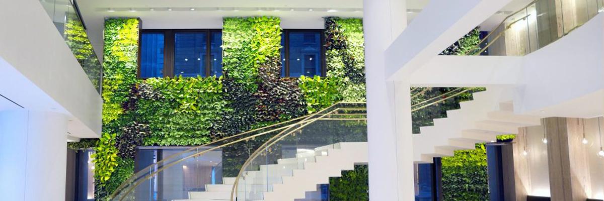 mur végétal naturel intérieur