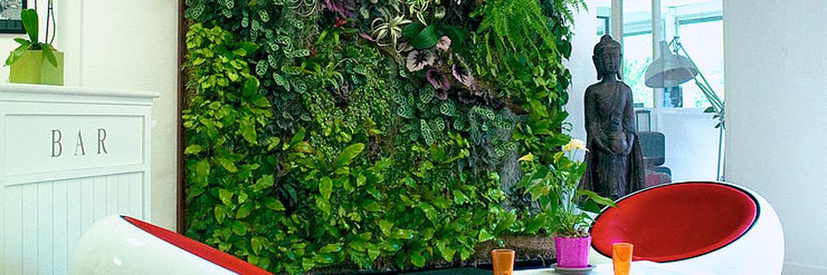 Mur végétal de plantes naturalisées (intérieur)